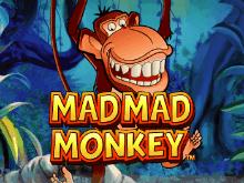 Игровой автомат Mad Mad Monkey